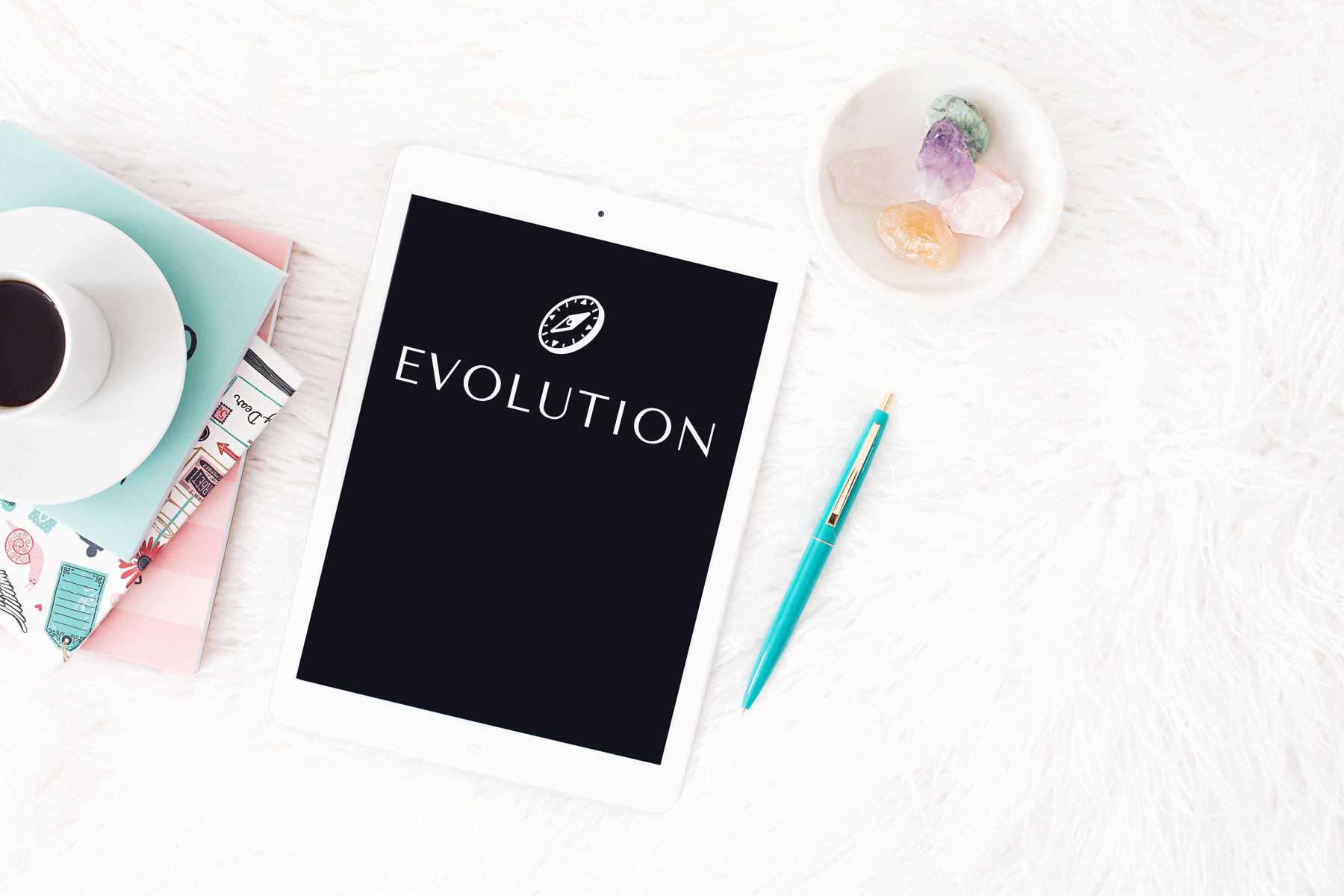 Online-Mastermind-Programm EVOLUTION